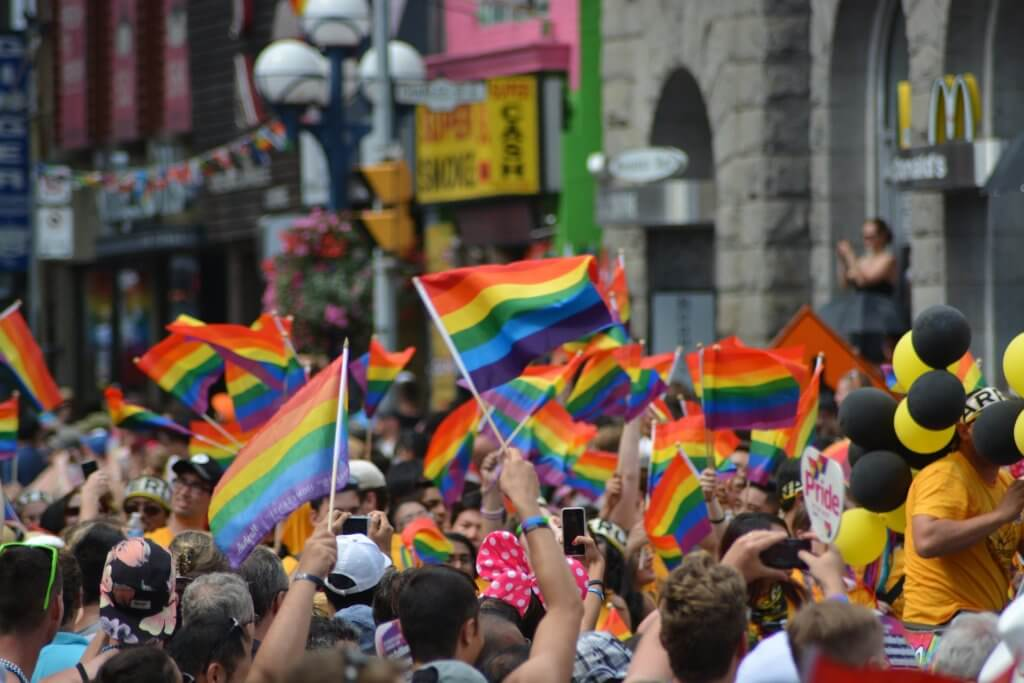 diversity pride flags