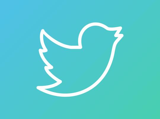 twitter marketing bird image