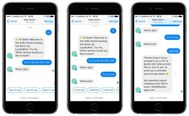 Screenshot of a chatbot conversation